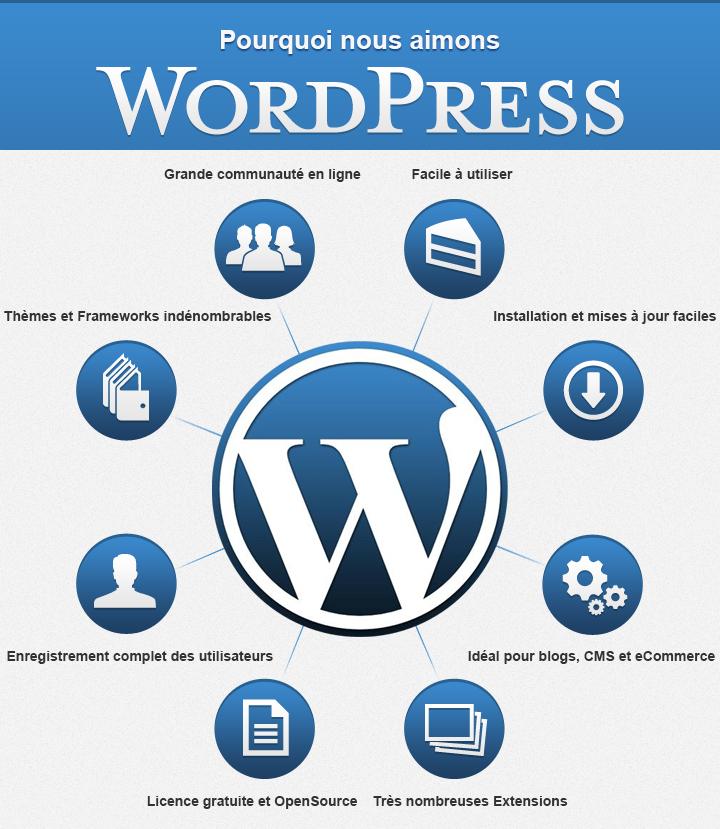 creation-de-sites-internet-toulouse-wordpress-avantages